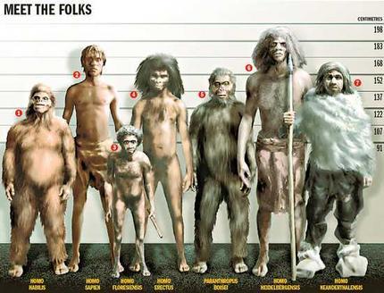 Néandertal et Cro-Magnon auraient mélangé leurs gènes