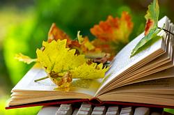 A propos de la rentrée littéraire 2011 dans Opinions, tribunes, idées, polémique, lettres ouvertes Rentree_litteraire_2011_240811