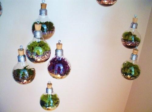 comment faire un mini terrarium dans une ampoule webzine caf du web. Black Bedroom Furniture Sets. Home Design Ideas